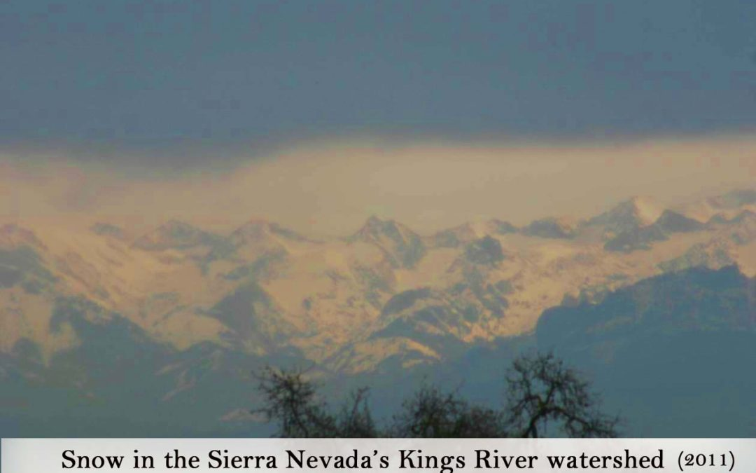 Kaweah Delta Water Conservation District January 8, 2019