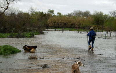 Valley Scores a Victory in the California Water Wars, November 5, 2018 by Devin Nunes