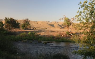 Guest Editorial Pacheco Reservoir May 1, 2018