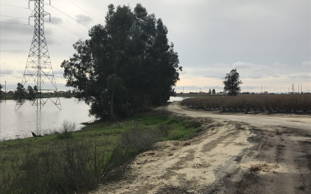 Consolidated Irrigation District/Central Kings GSA March 13, 2019